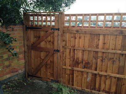 Rear view - Trellis Top Gate and Trellis Top Fencing with wooden posts
